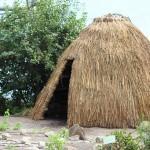 Tule Hut